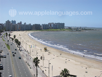 Playa de Montevideo